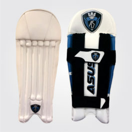 Pro Punch Wicket Keeping Pad
