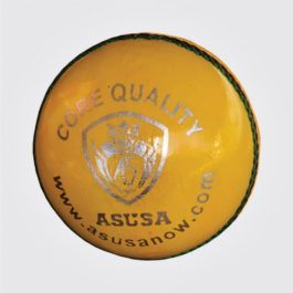 INDOOR TRAINING CRICKET BALL ( 130g )